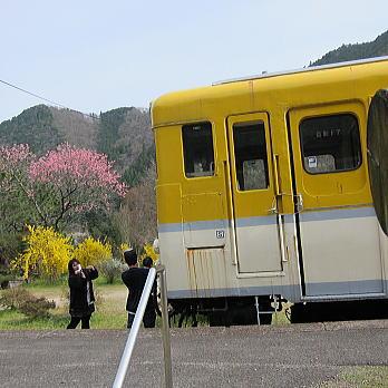 yasuno05.jpg