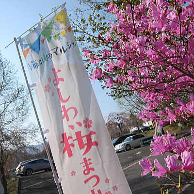 yosiwa10.jpg